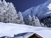 HD Frozen Winter 1080x2280 Wallpaper