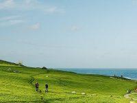 Sea Field Wallpaper 1080x2280