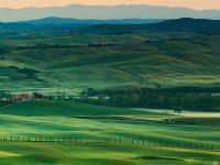 Tuscany Wallpaper hd 1080x2280