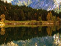 Water Reflection Wallpaper 4k 1080x2280